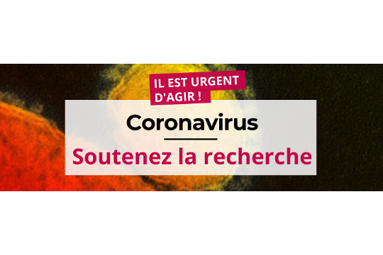 Coronavirus - Place de la communication